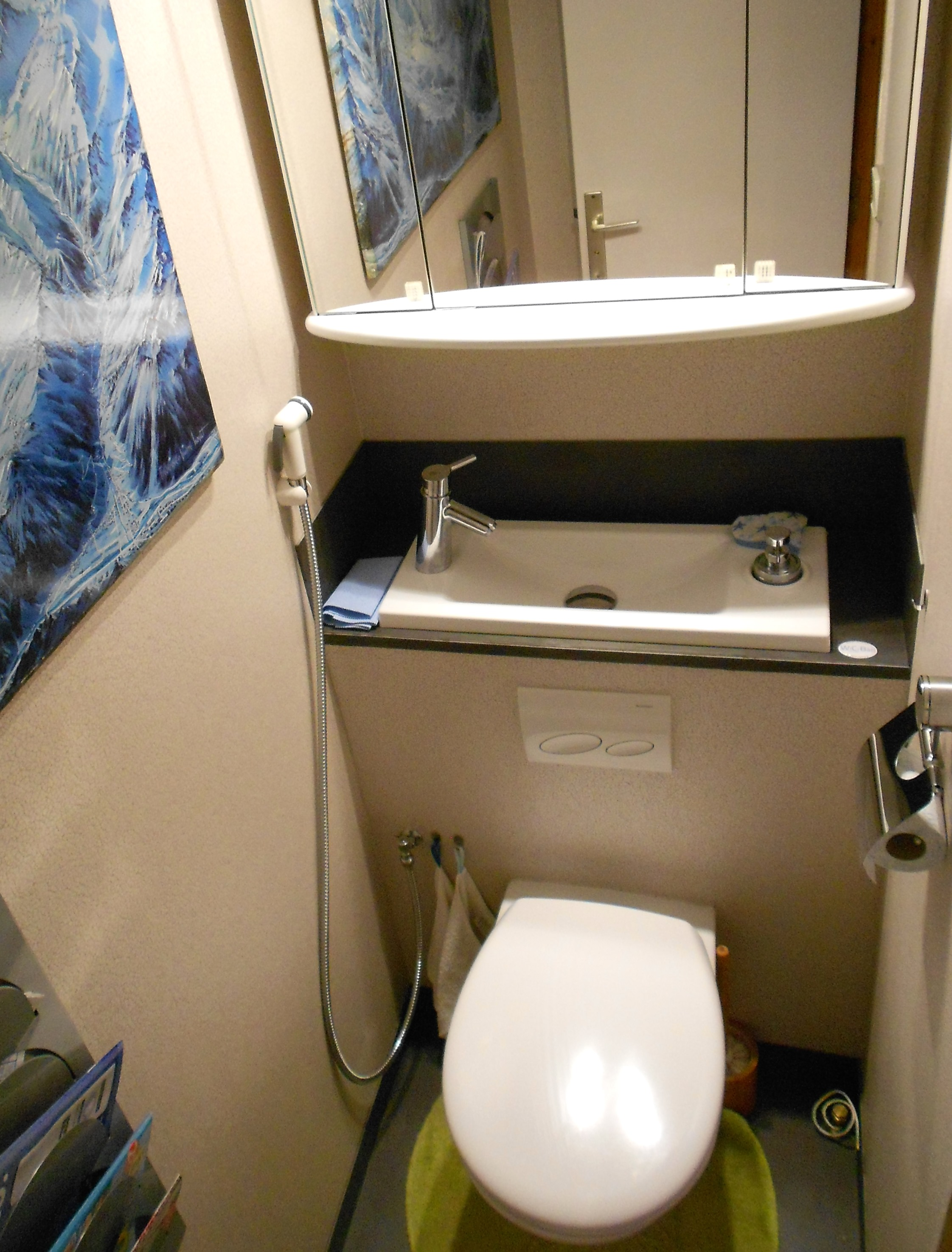 Shower toilet Gallery
