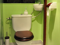 Wall-standing WiCi Mini, toilet and small sink combination - Mr and Ms C (France - 69) - 1 of 3